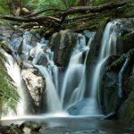 Dandenong Ranges Olinda Falls near Melbourne Australia