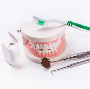 Treating And Avoiding Bleeding Gums - glen waverley dentist